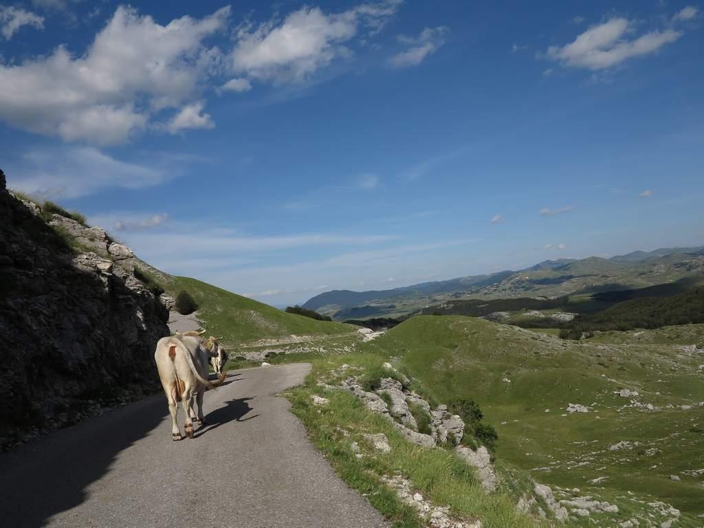 pe_bicicleta_Durmitor_Muntenegru_24