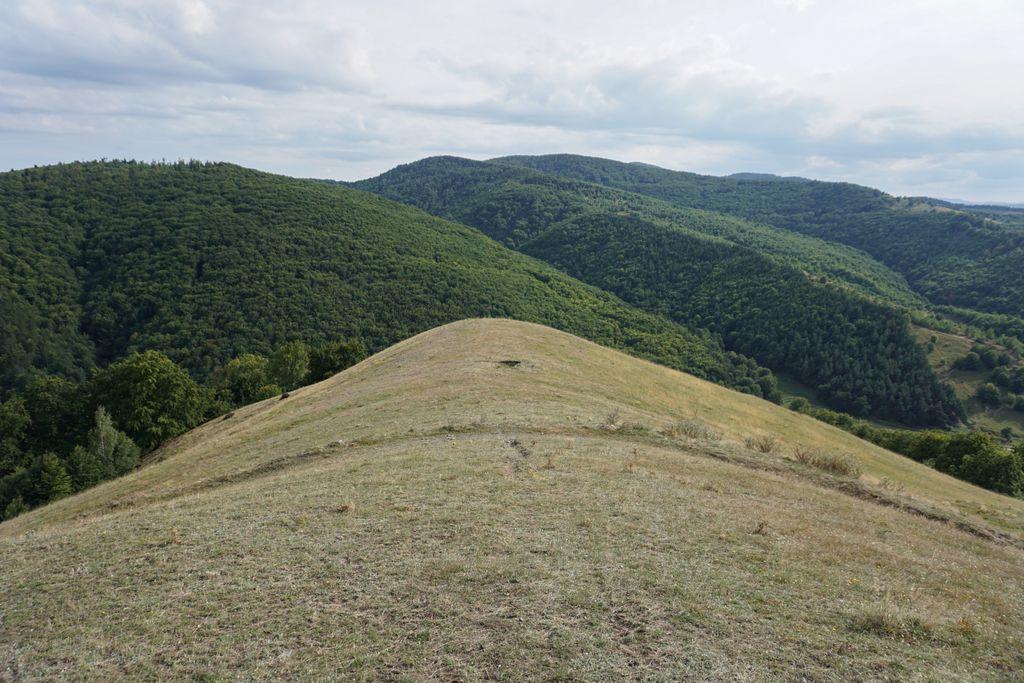 Împărăția frumosului. Micul munte de lângă Stârciu, o splendoare a naturii. A paisprezecea tabără SPS