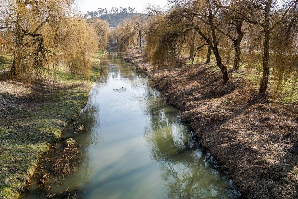 """Din frumusețile Șimleului Silvaniei: Promenada râului Crasna, râul celor """"100"""" de rațe sălbatice"""