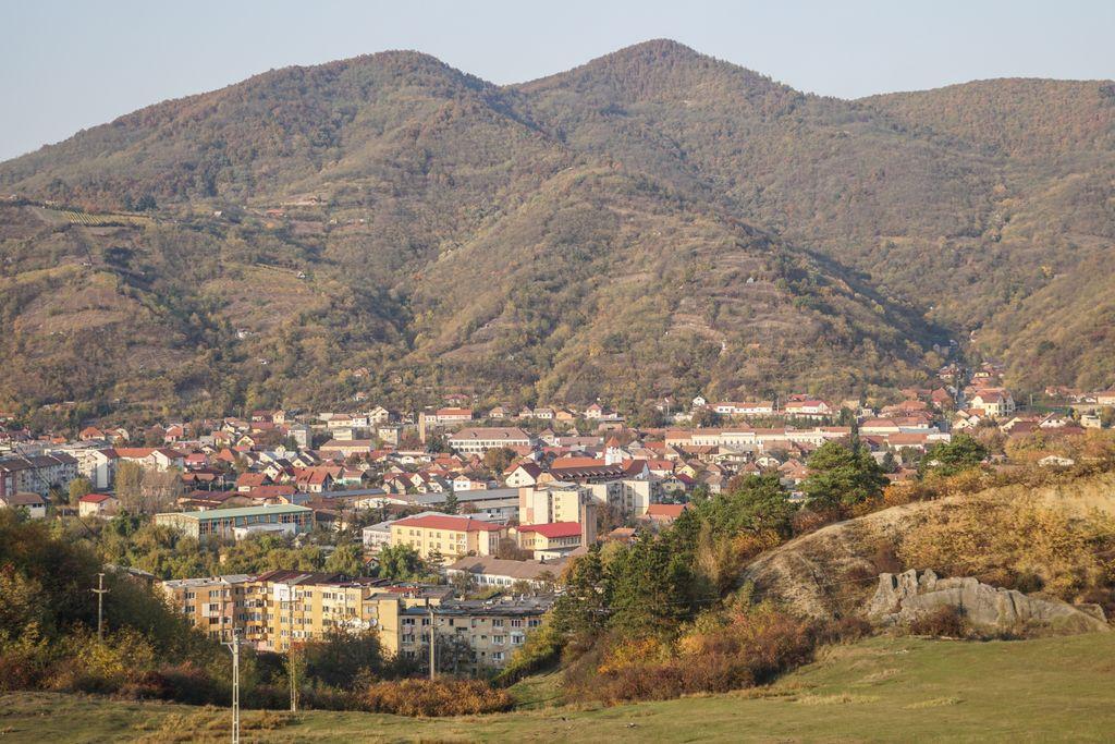 Șimleu Silvaniei. Bibiloteca Orășenească îi poartă numele lui Alexandru Sterca Șuluțiu, unul dintre întemeietorii învățământului românesc din Sălaj