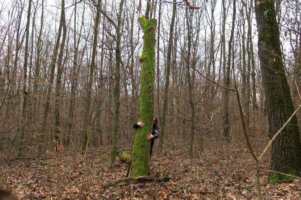 """Pădurea nu înseamnă doar niște copaci, un loc de unde tai lemne. E viață. E """"acasă"""""""