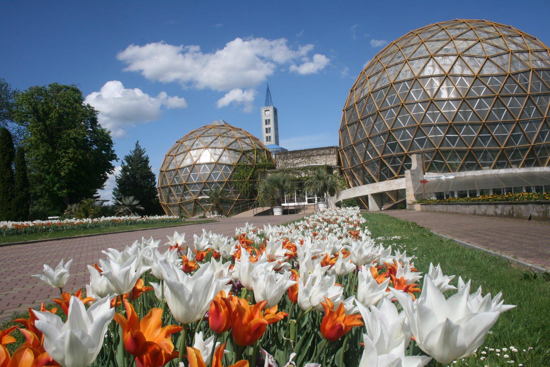 Grădina Botanică Jibou, curcubeu de flori