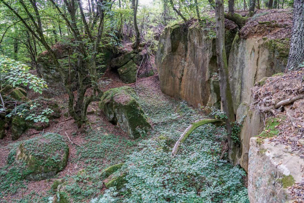 Pietrele popii de la Creaca, un loc plin de mister, probabil cel mai spectaculos loc din Sălaj
