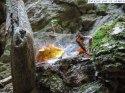 cascada_sipot_halmasd__18_