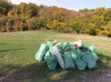 actiune_ecologizare_meses_zalau__7_