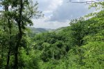 dealurile_verzi_de_langa_satul_trestia_salaj__17_