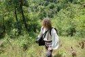 dealurile_verzi_de_langa_satul_trestia_salaj__1_