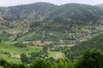 dealurile_verzi_de_langa_satul_trestia_salaj__31_
