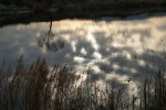 lacul_de_la_marginea_drumului_chechis_salaj__19_